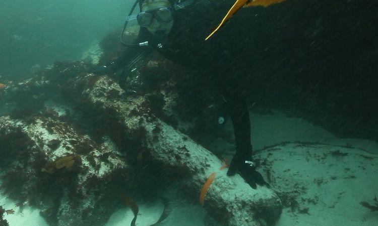 Sao Jose Shipwreck. Times Live ZA