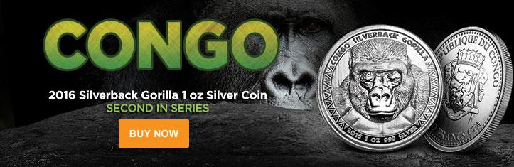 Congo Silverback Gorilla