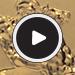 2015 Great Britain Gold Sovereign BU