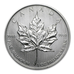 2005 1 oz Canadian Palladium Maple Leaf (Inaugural Issue)