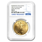 2007-W 4-Coin Burnished Gold American Eagle Set MS-69 NGC (ER)