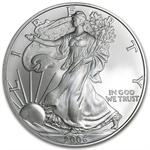 2006-W (Burnished) Silver American Eagle (Capsule Only)