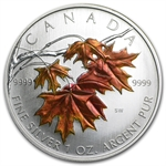 2007 1 oz Silver Canadian Maple Leaf (Orange Sugar Maple) (Spots)