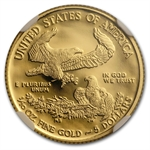 2010-W 1/10 oz Proof Gold American Eagle PF-70 NGC (ER)