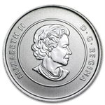 2012 1/4 oz Silver Canadian $20 Polar Bear Coin (Capsule Only)