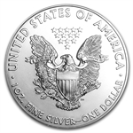 2013 1 oz Silver Eagles