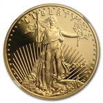 2013-W 1/2 oz Proof Gold American Eagle PF-70 NGC (ER)