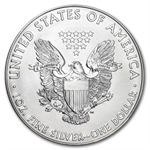 2013 (S) Silver American Eagle - MS-70 NGC - Early Releases