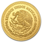2013 1/2 oz Gold Mexican Libertad (Brilliant Uncirculated)
