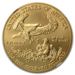 2013-W 1 oz Burnished Gold Eagle NGC MS-69 (ER)
