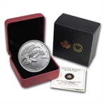 2013 1/4 oz Silver Canadian $3 100th Anniv. of Arctic Expedition