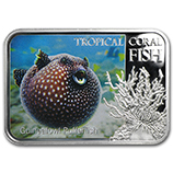 New Zealand Mint (Tropical Coral Fish Series)