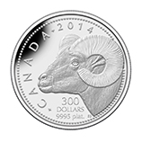 Platinum Canadian Commemorative Coins