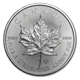 IRA-Approved Silver Maple Leafs