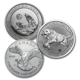 Royal Canadian Mint Silver Bullion