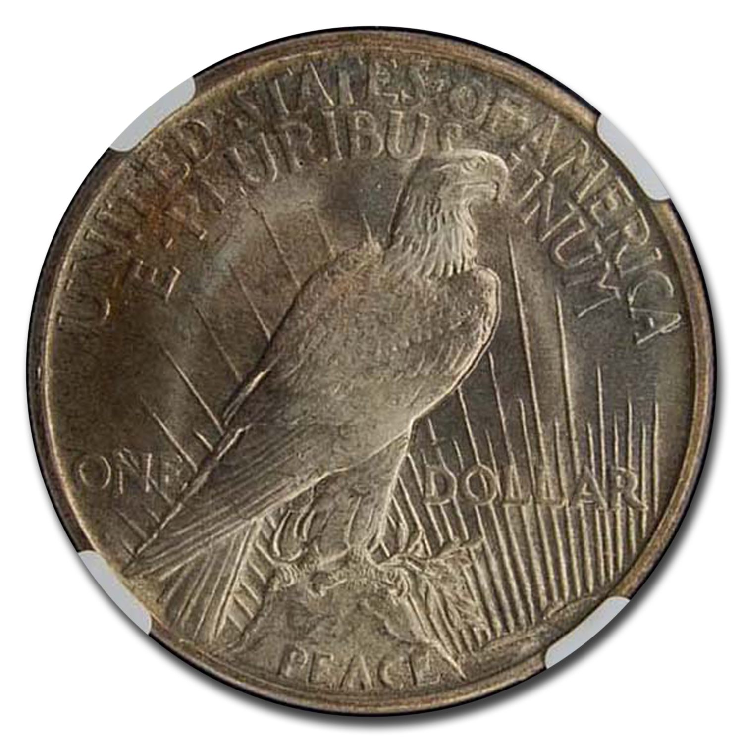1921 Peace Dollar MS-66 NGC (High Relief)