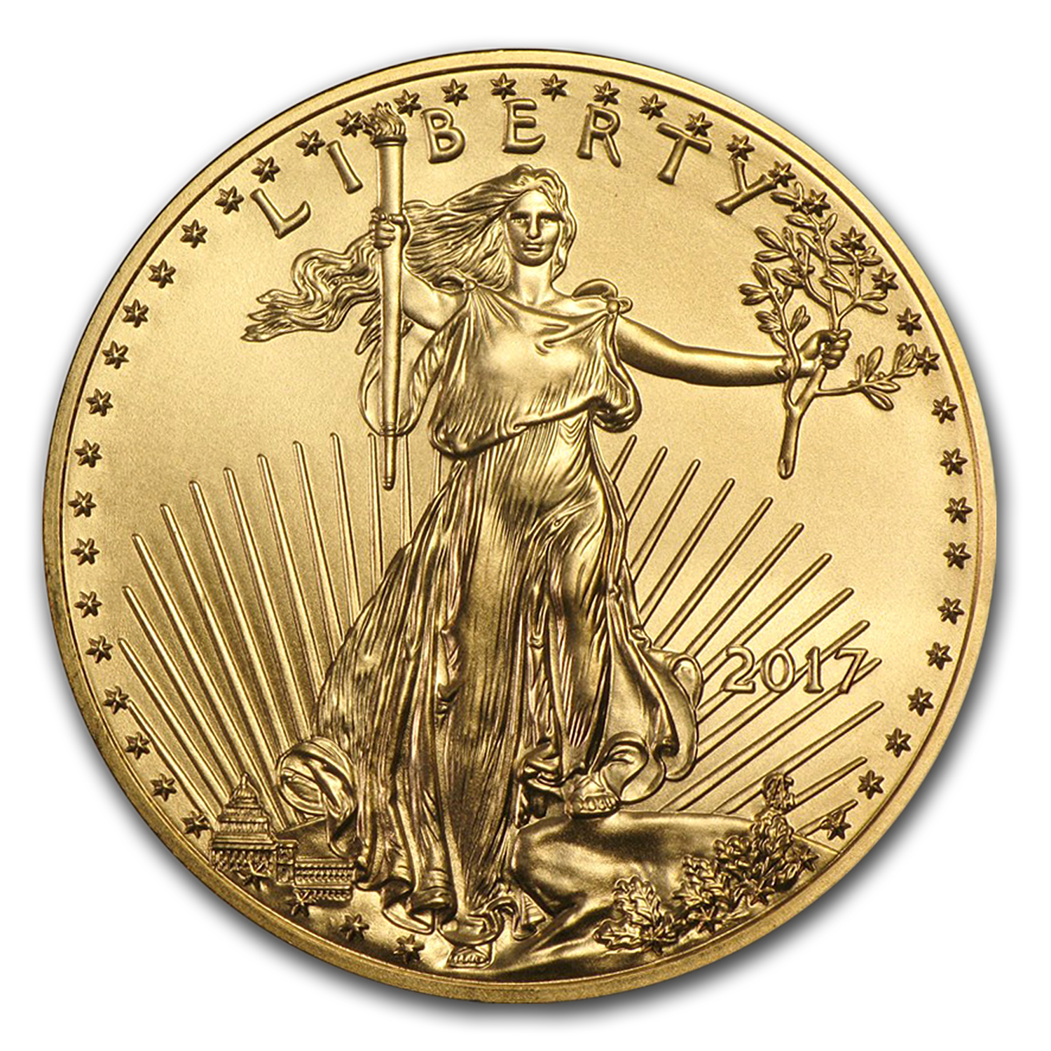 2017 1 oz Gold American Eagle (20-Coin MintDirect® Tube)