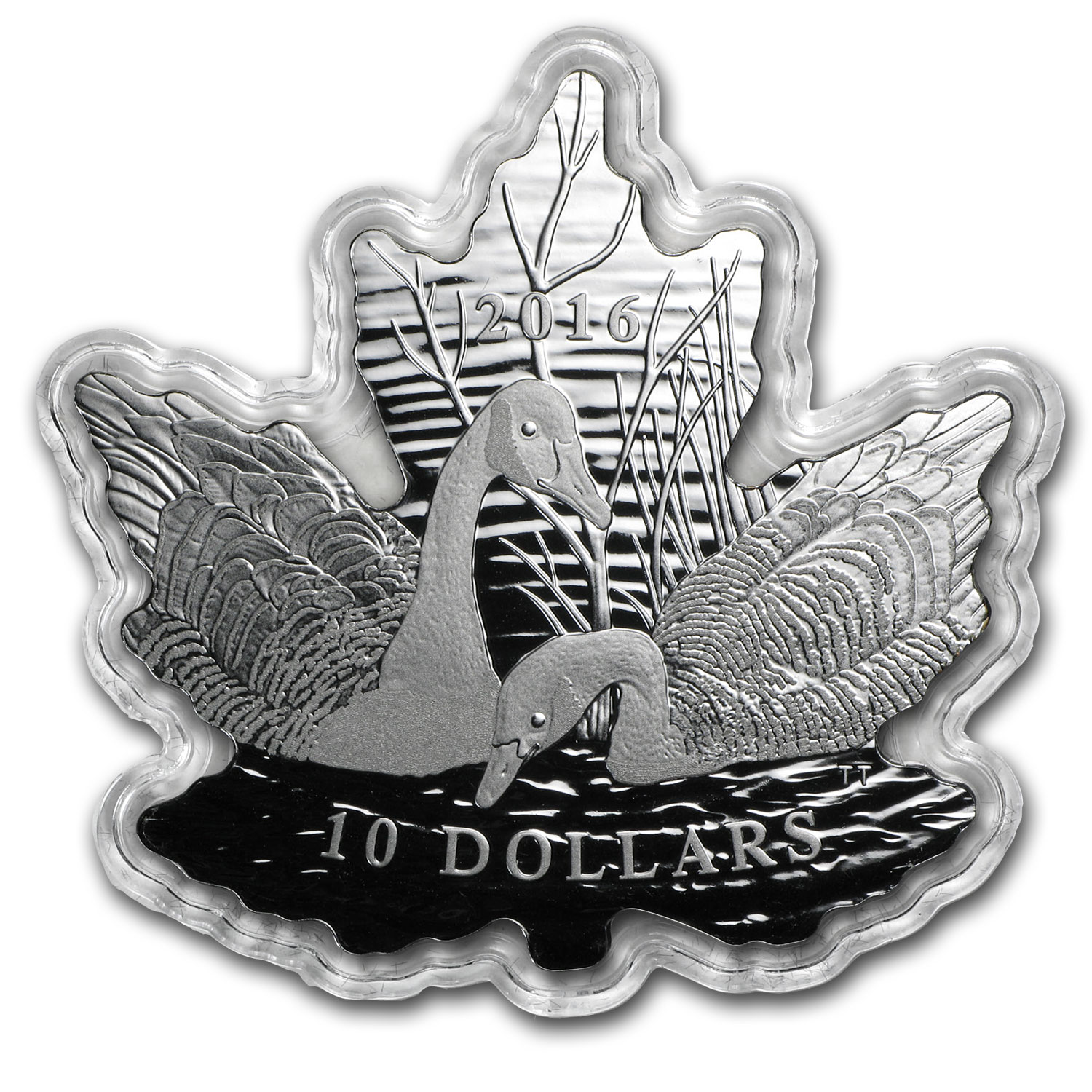 2016 Canada 1/2 oz Silver $10 Proof Maple Leaf Silhouette: Geese