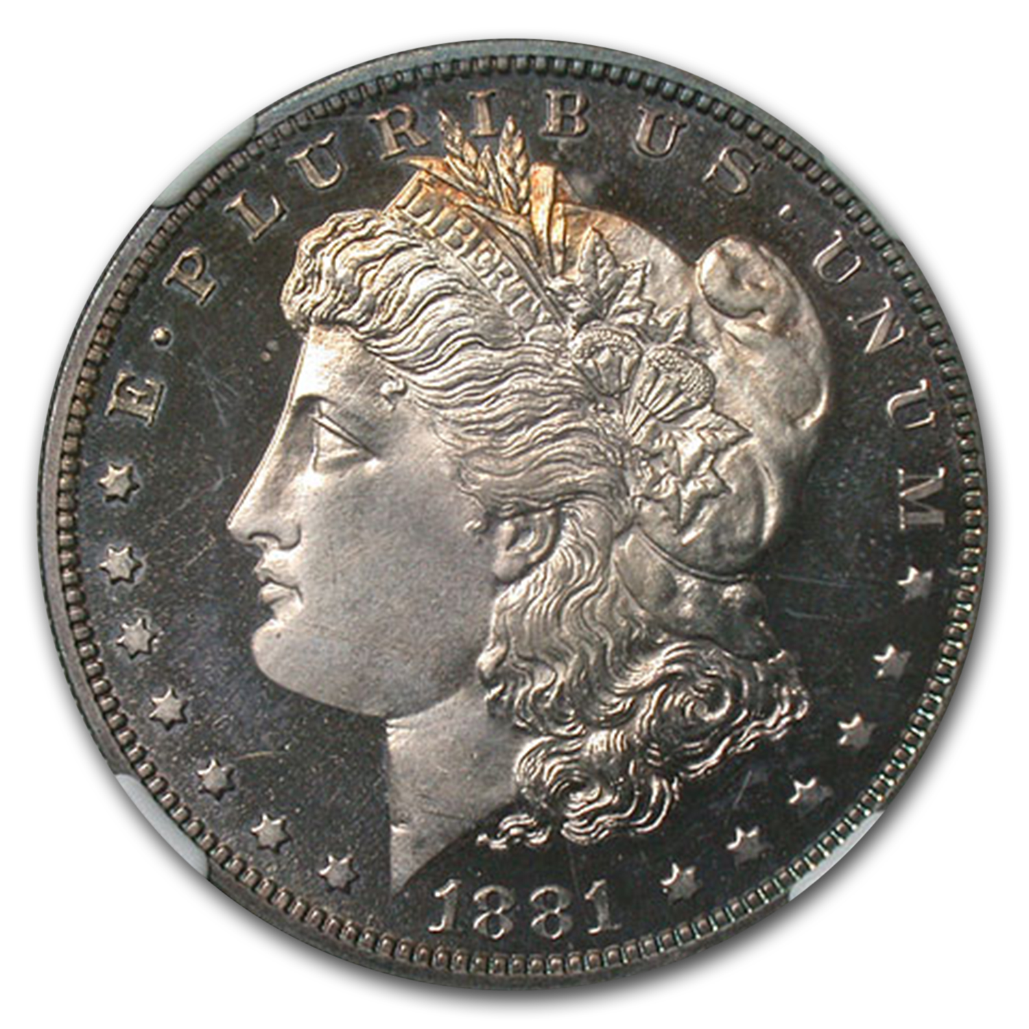 1881 Morgan Dollar PF-65 CAMEO NGC