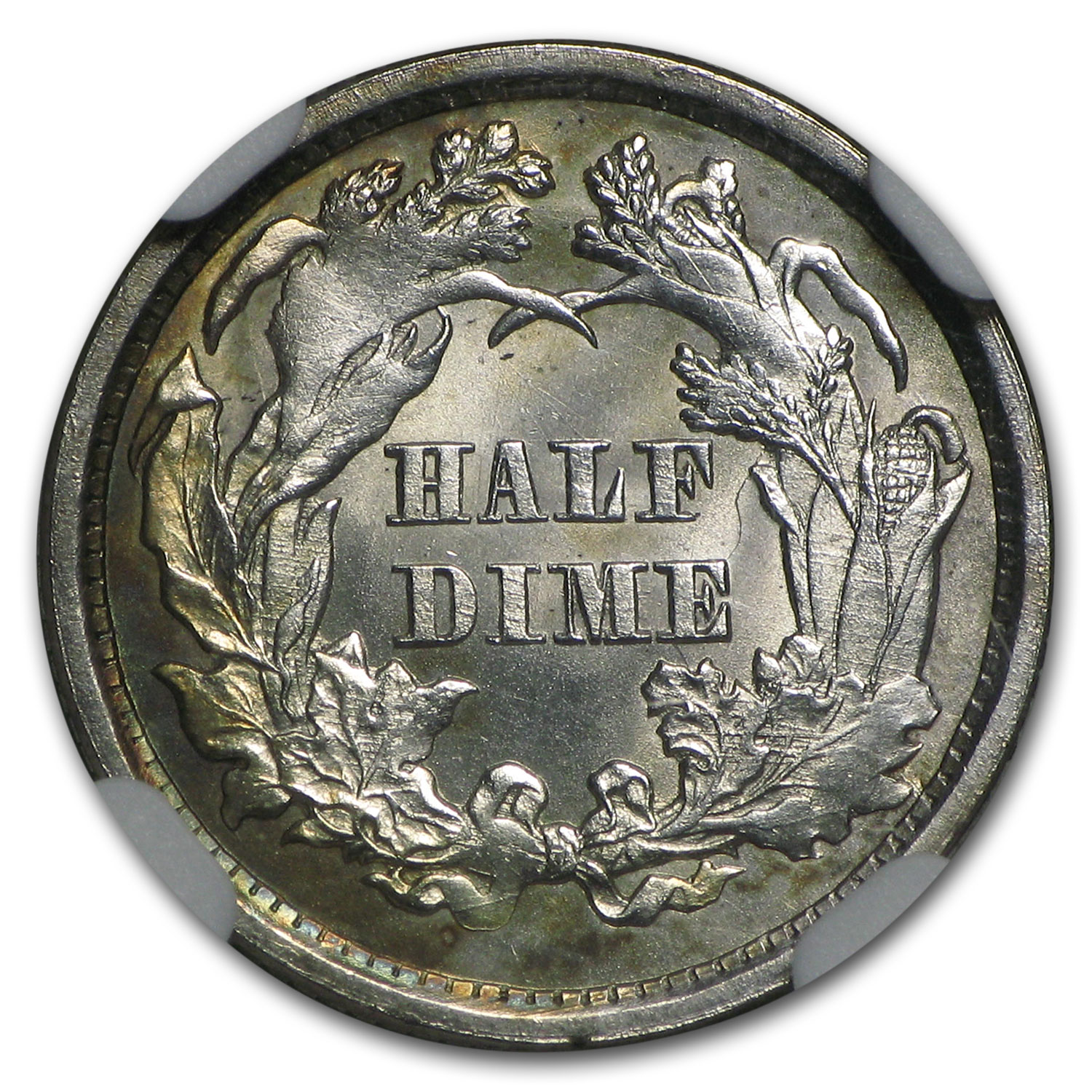 1873 Liberty Seated Half Dime MS-64 NGC