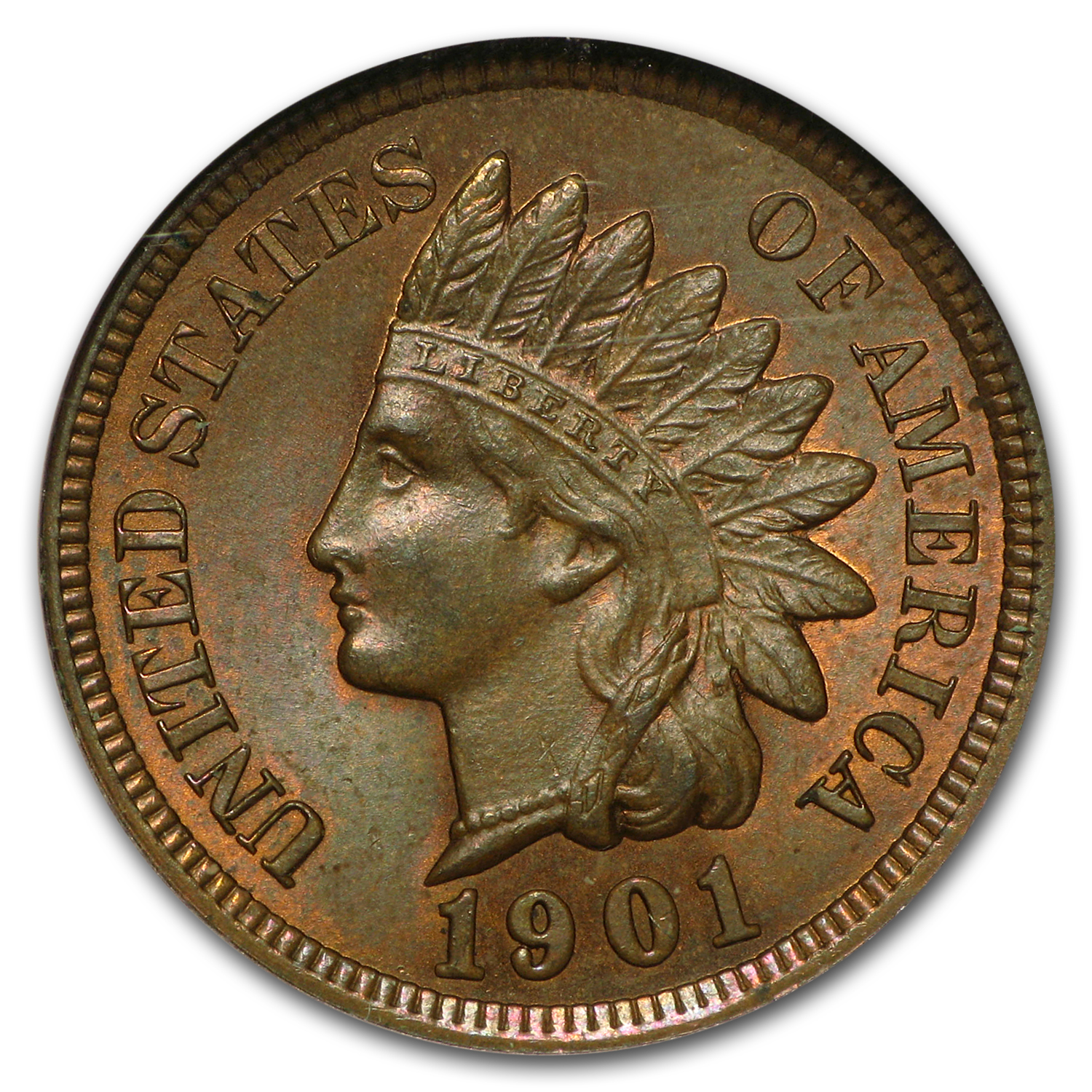 1901 Indian Head Cent MS-65 NGC (Brown)