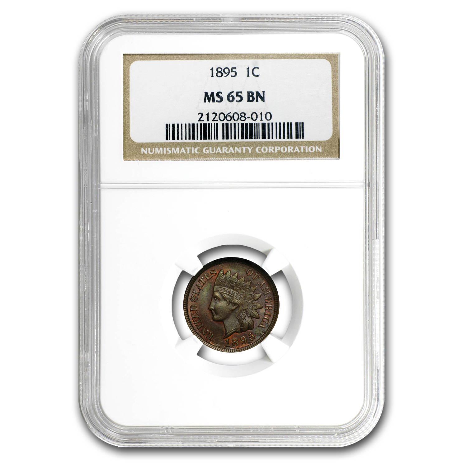 1895 Indian Head Cent MS-65 NGC (Brown)