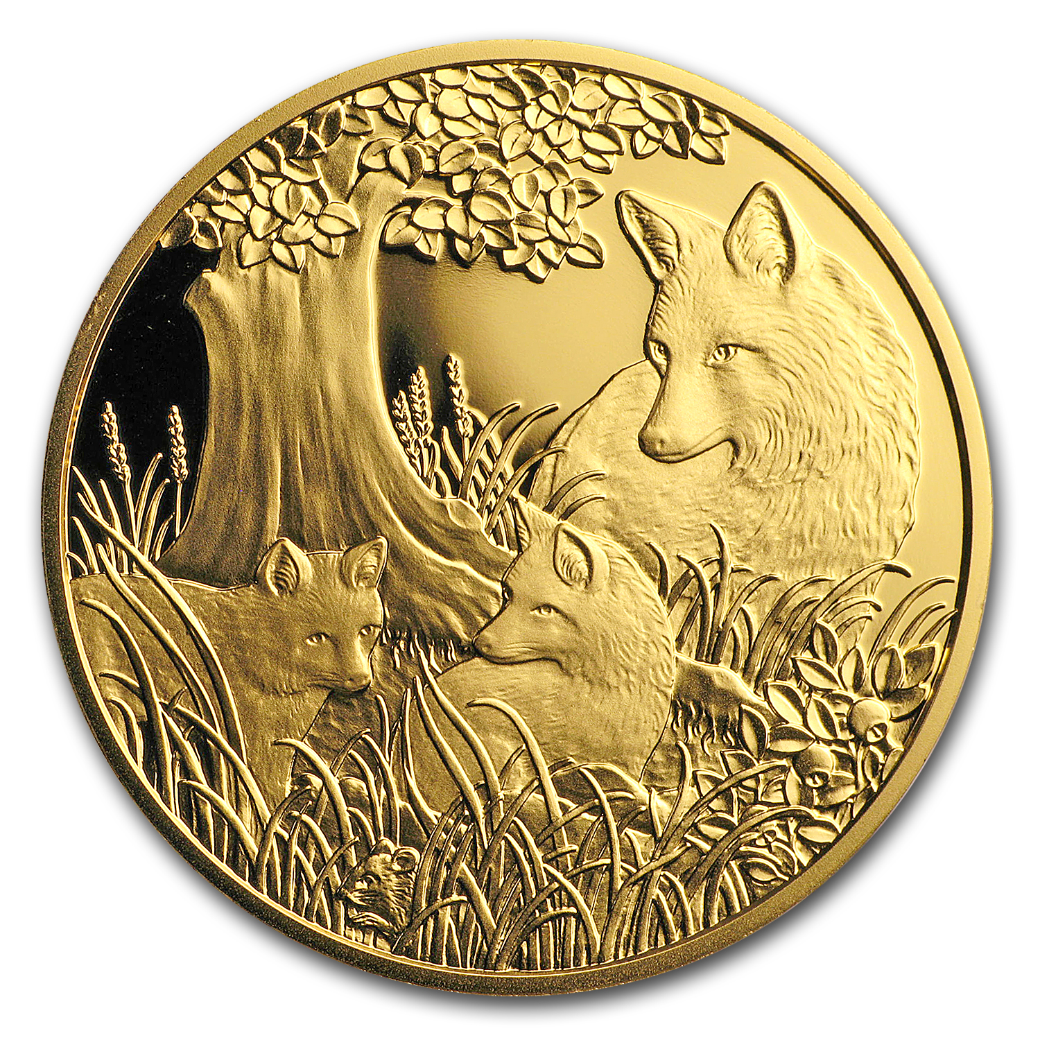 2016 Austria Prf Gold €100 Wildlife in our Sights (The Fox)
