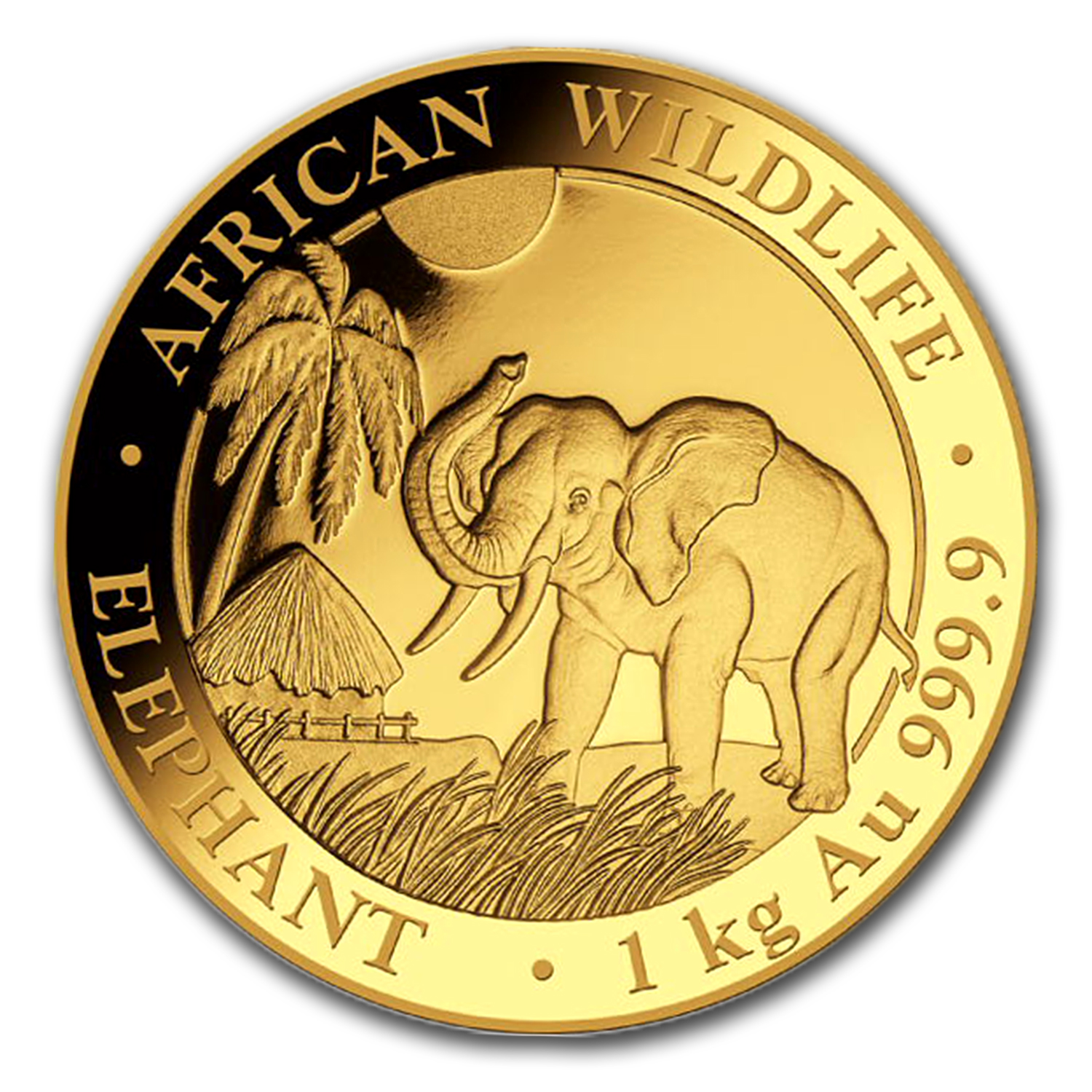 2017 Somalia 1 kilo Gold African Elephant (Proof)
