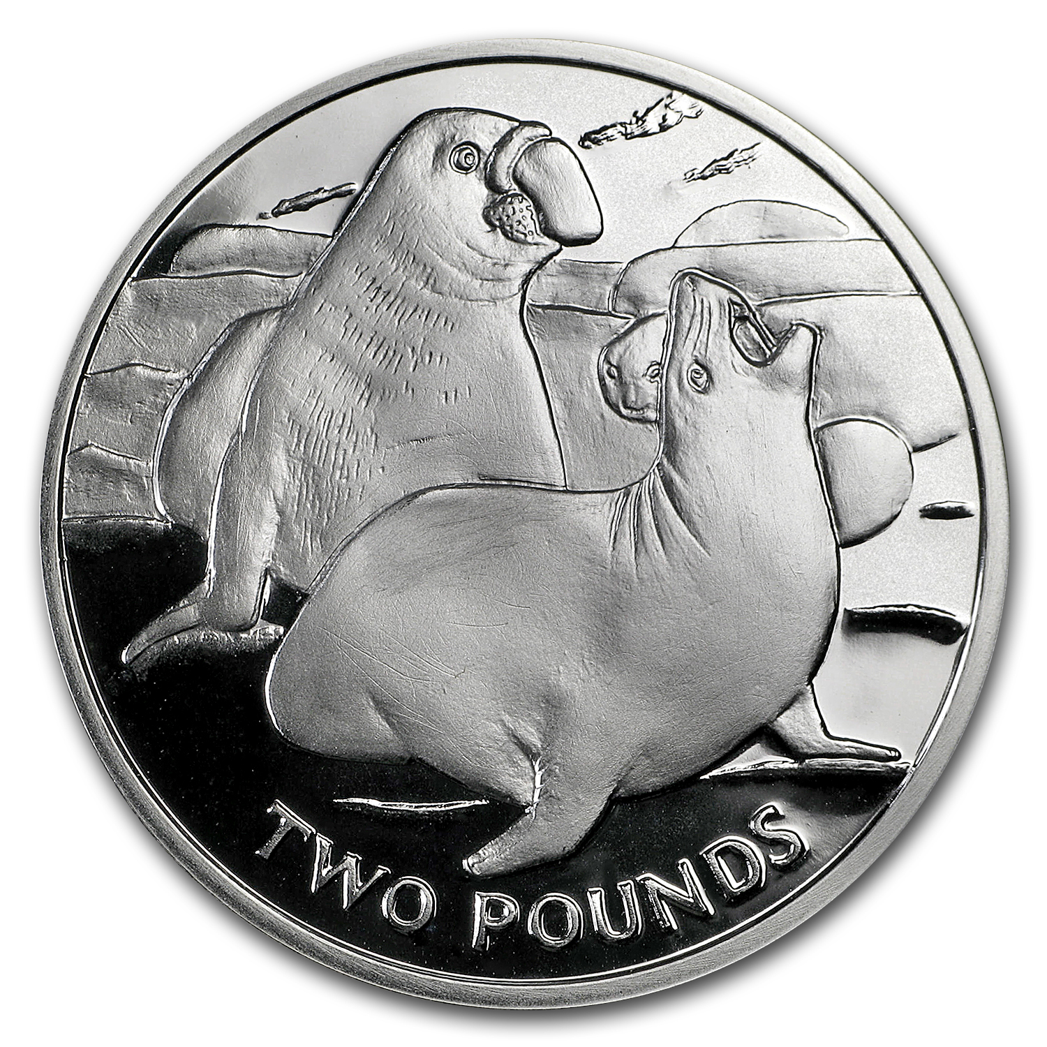 2017 South Georgia Silver £2 Elephant Seal Proof