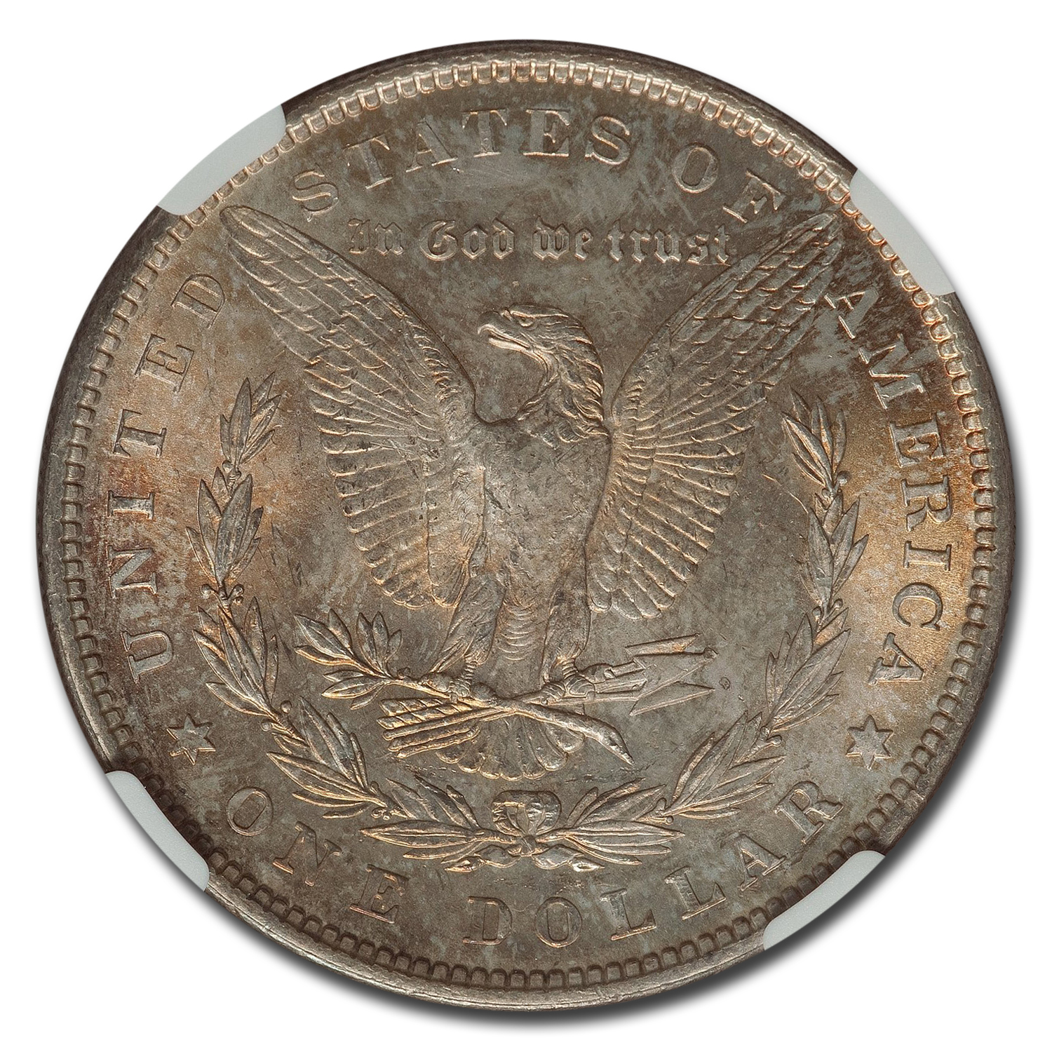 1878 Morgan Dollar 7 TF Rev of 79 MS-65 NGC