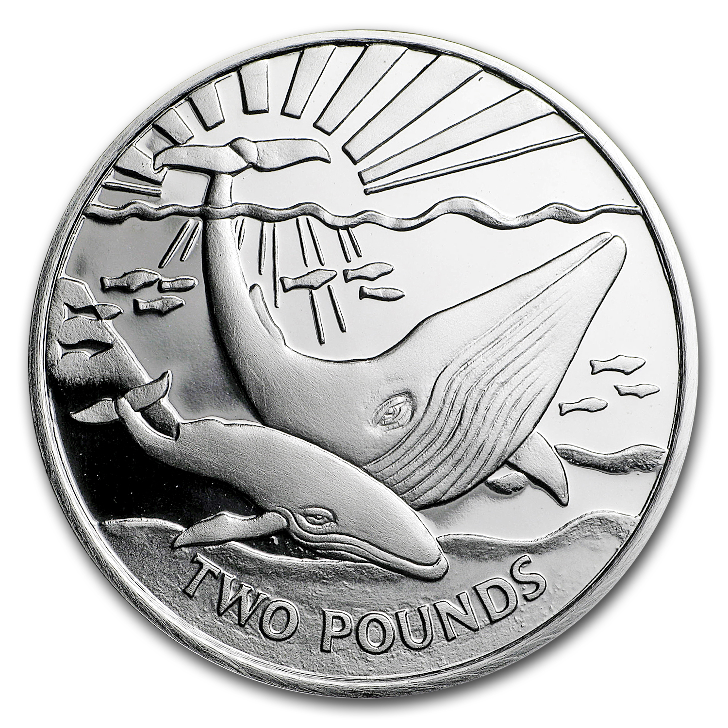 2017 South Georgia Silver £2 Whale Proof