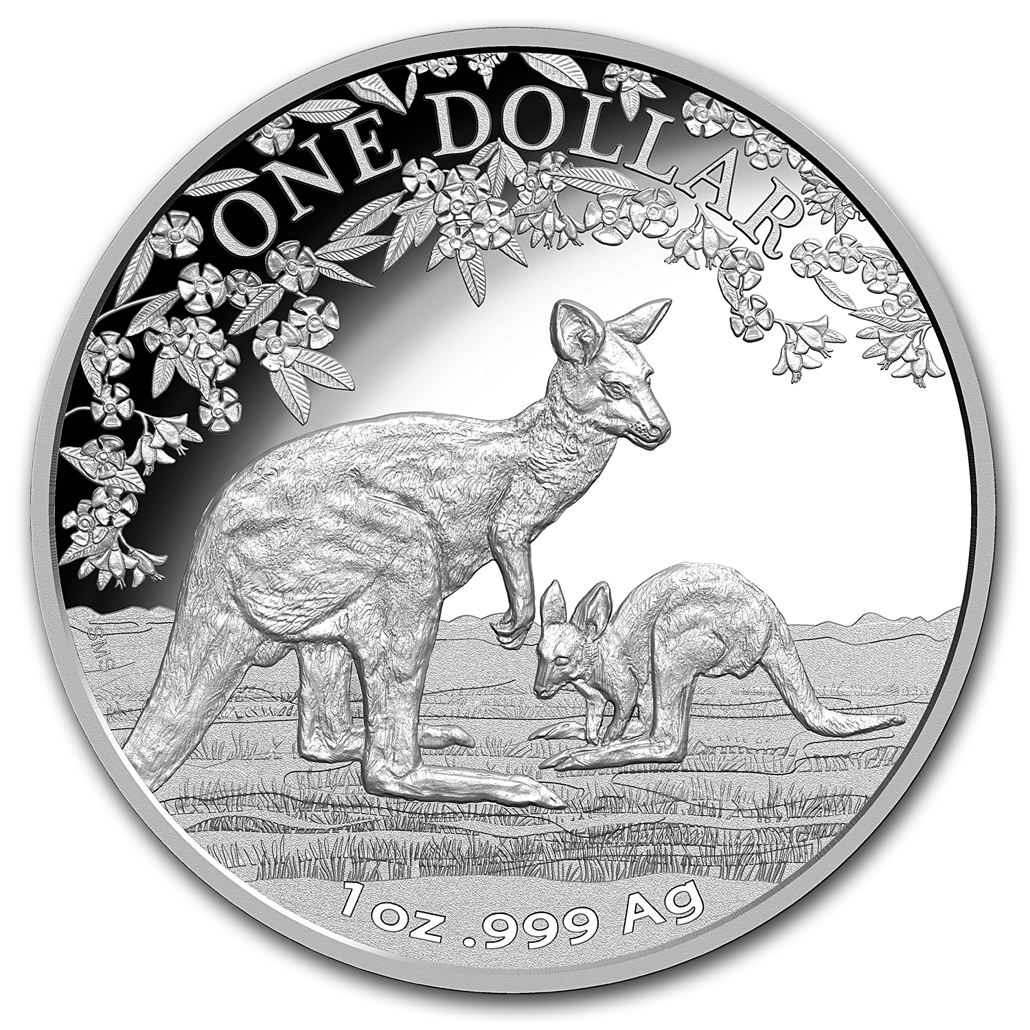 2017 Australia 1 oz Proof Silver Kangaroo (w/Box and COA)