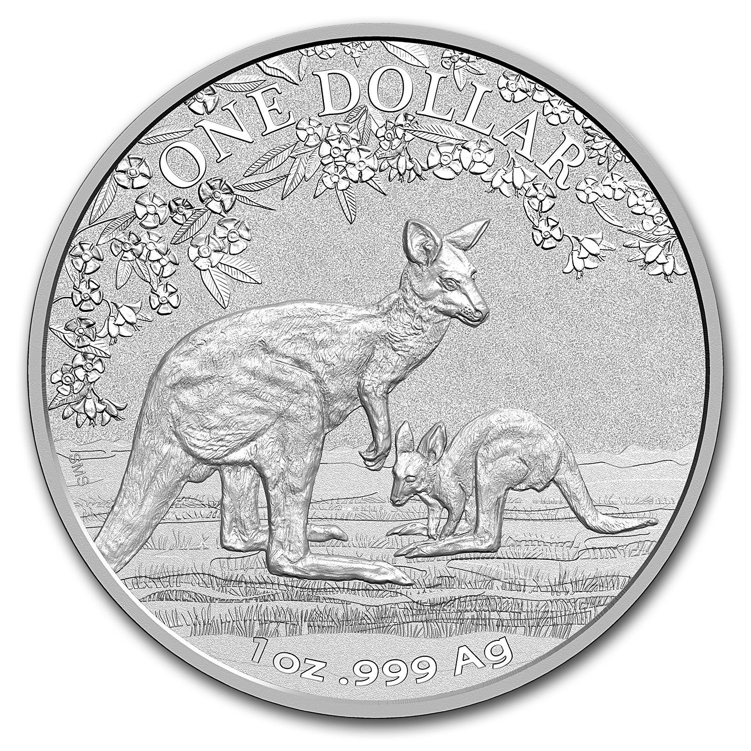 2017 Australia 1 oz Silver Kangaroo (Display Card)