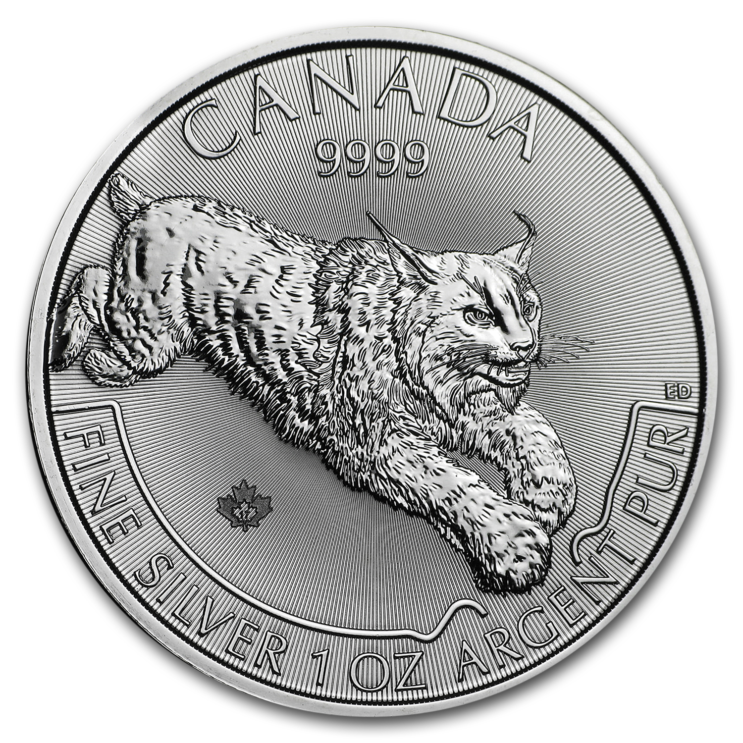 2017 Canada 100-Coin Silver Predator Lynx APMEX Mini Monster Box