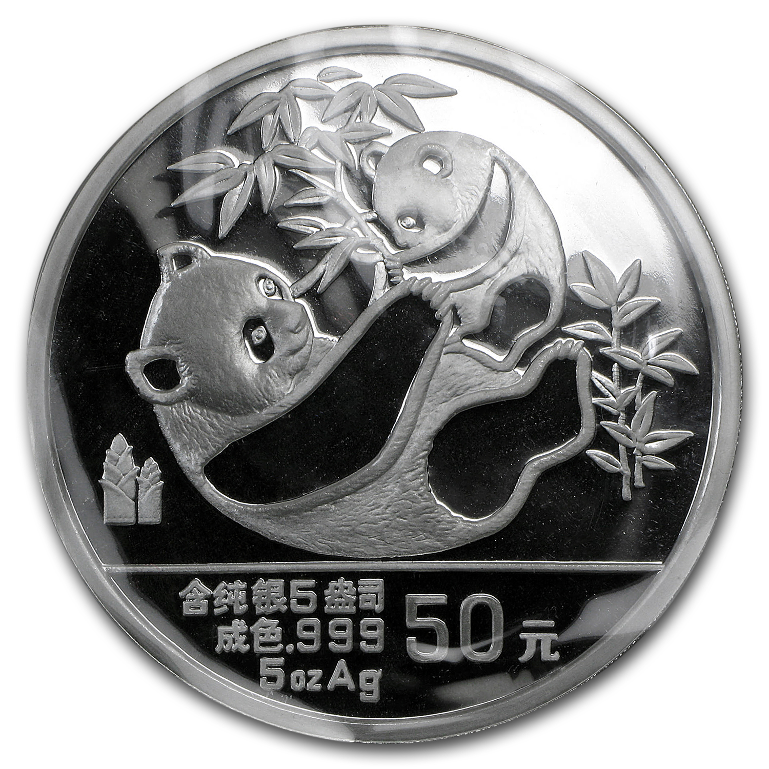 1989 China 5 oz Silver Panda Proof (w/Box & COA)