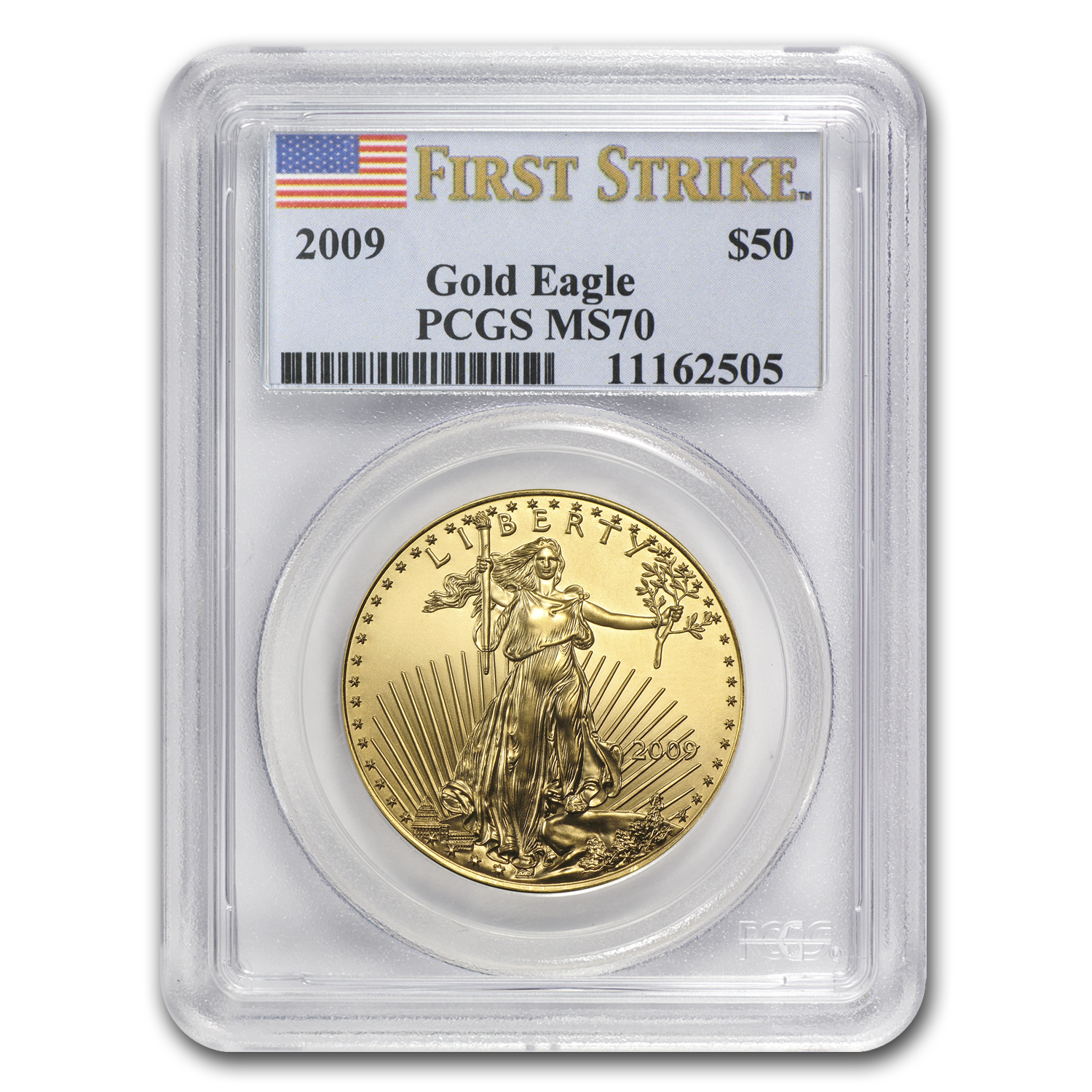 2009 1 oz Gold American Eagle MS-70 PCGS (FS)