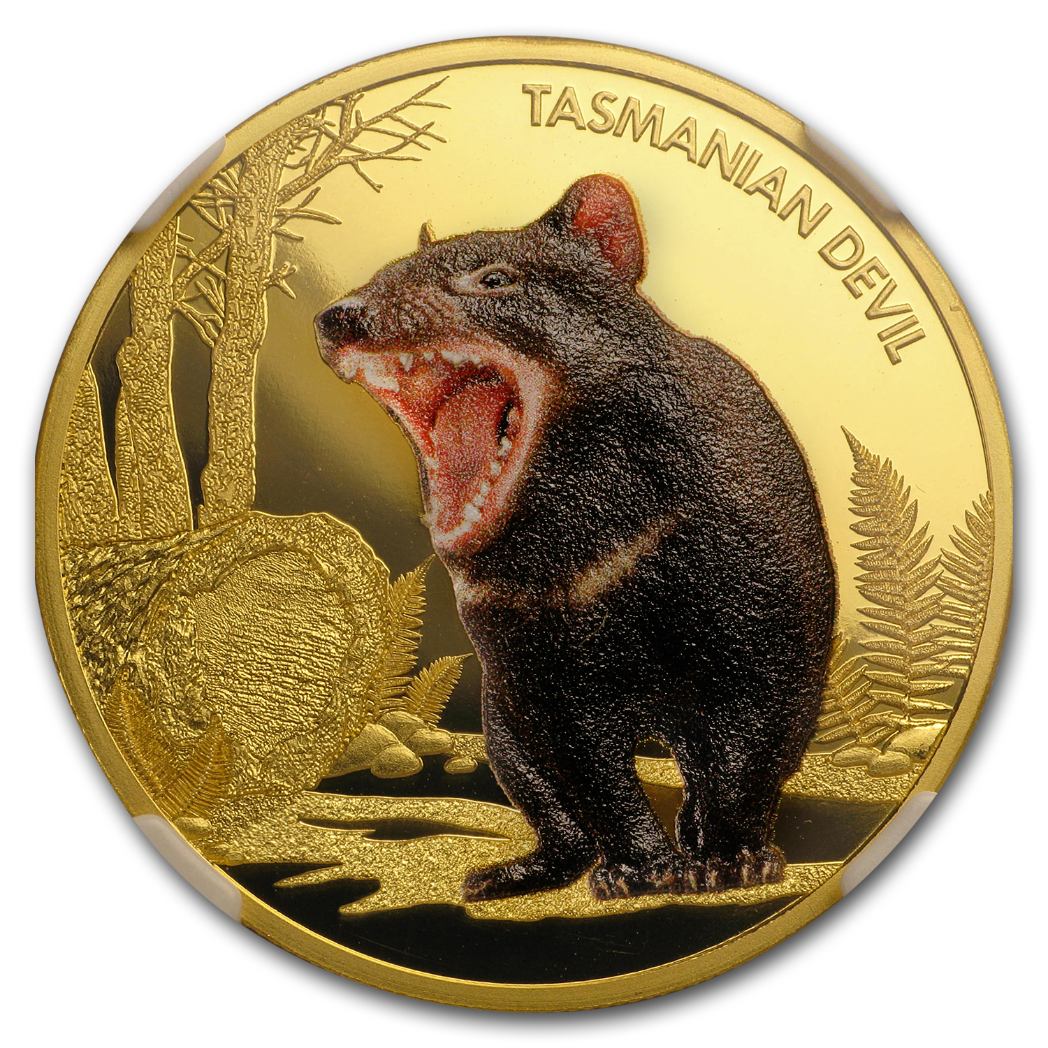2013 Niue 1 oz Proof Gold Tasmanian Devil PF-69 NGC