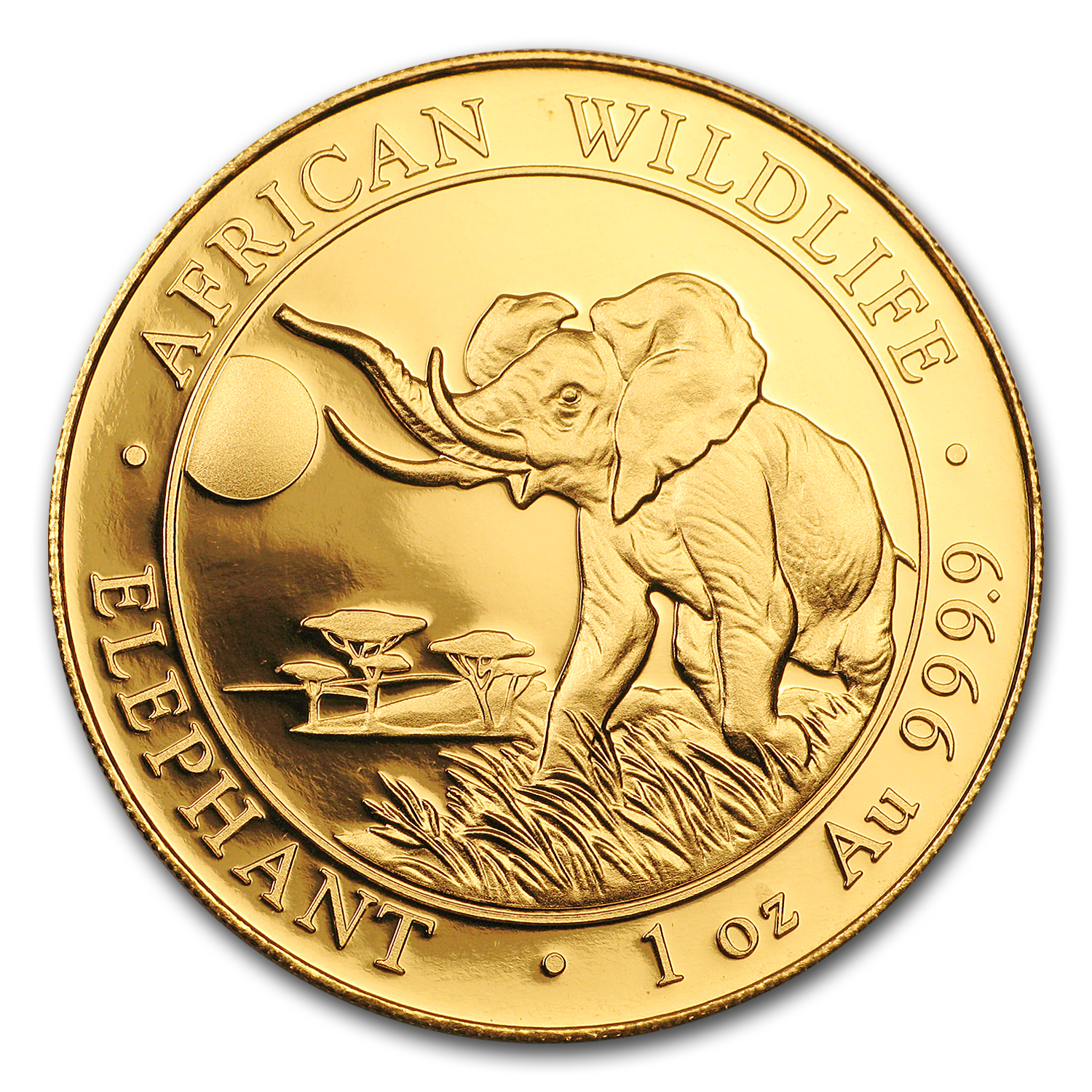 2016 Somalia 1 oz Gold African Elephant Proof