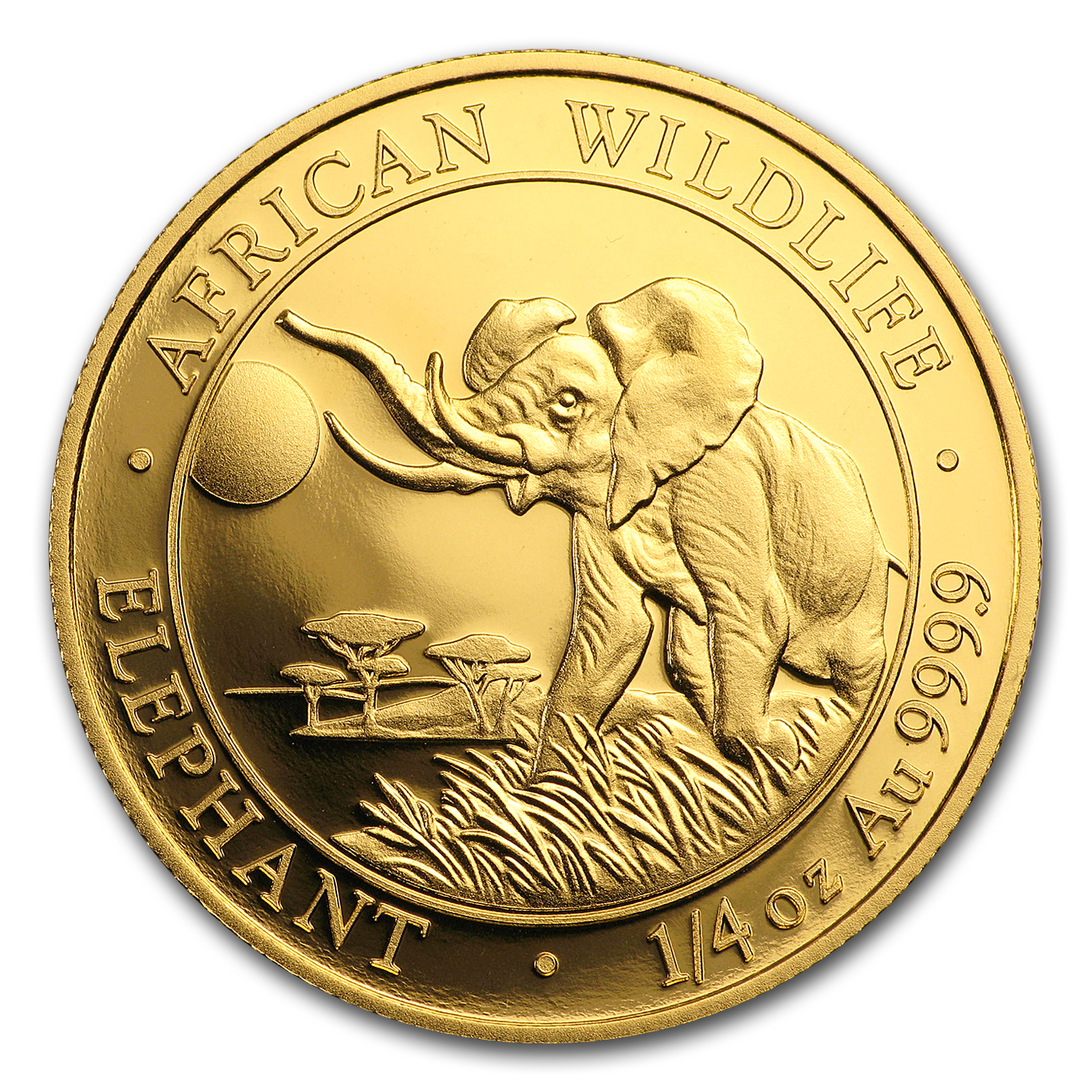 2016 Somalia 1/4 oz Gold African Elephant Proof