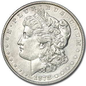 1878 Morgan Dollar 8 Tailfeathers AU Details (Cleaned)