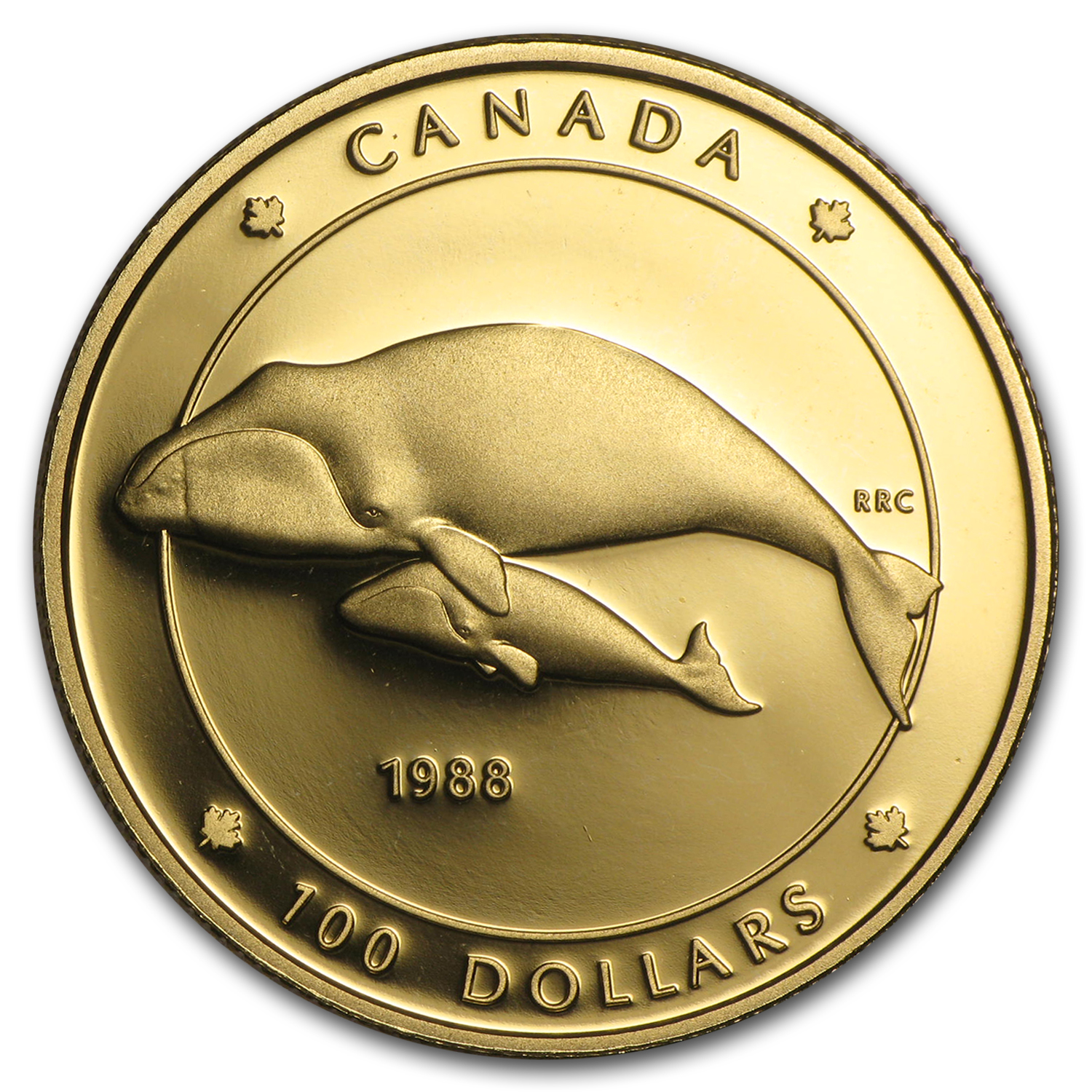 1988 Canada 1/4 oz Proof Gold $100 Bowhead Whale