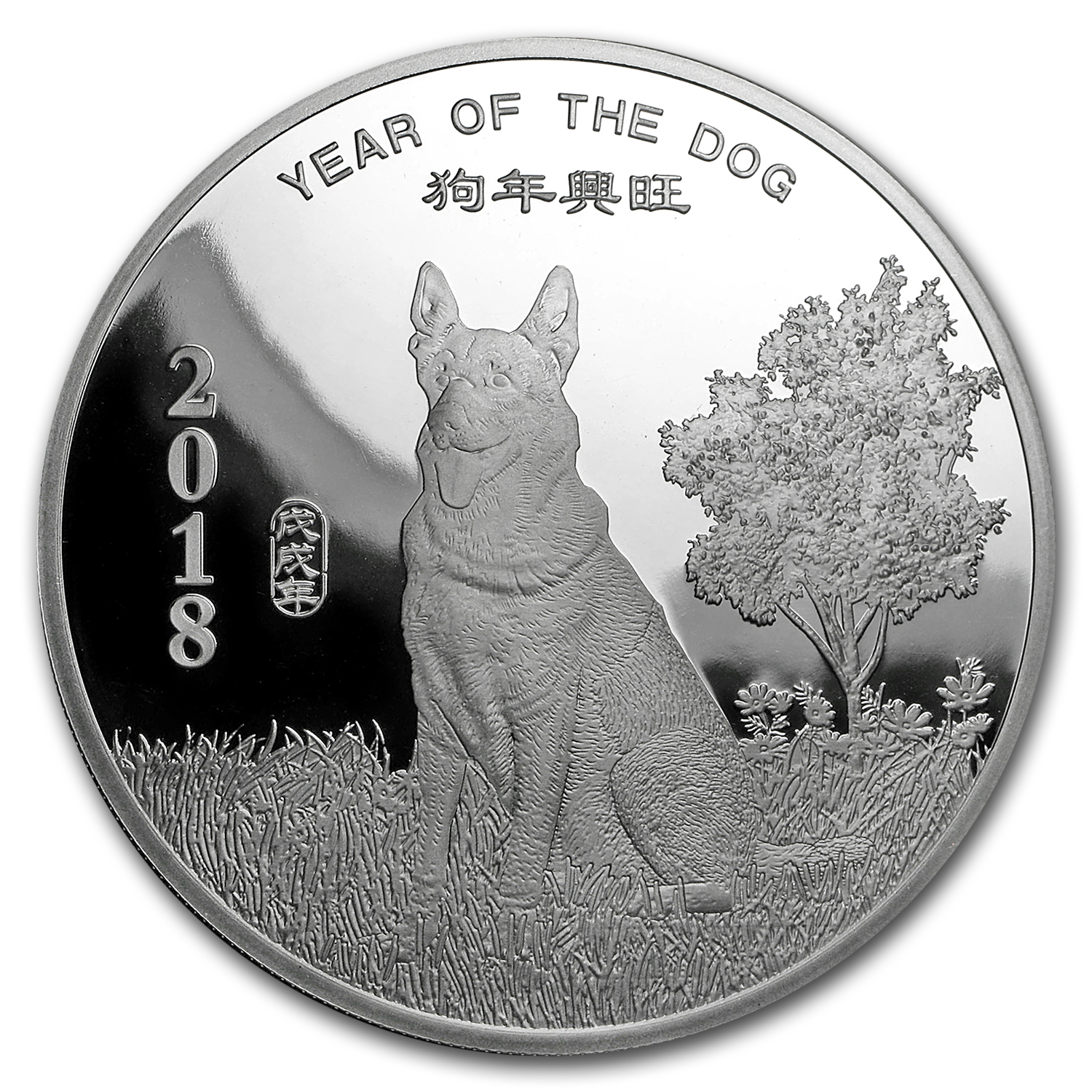 5 oz Silver Round - APMEX (2018 Year of the Dog)