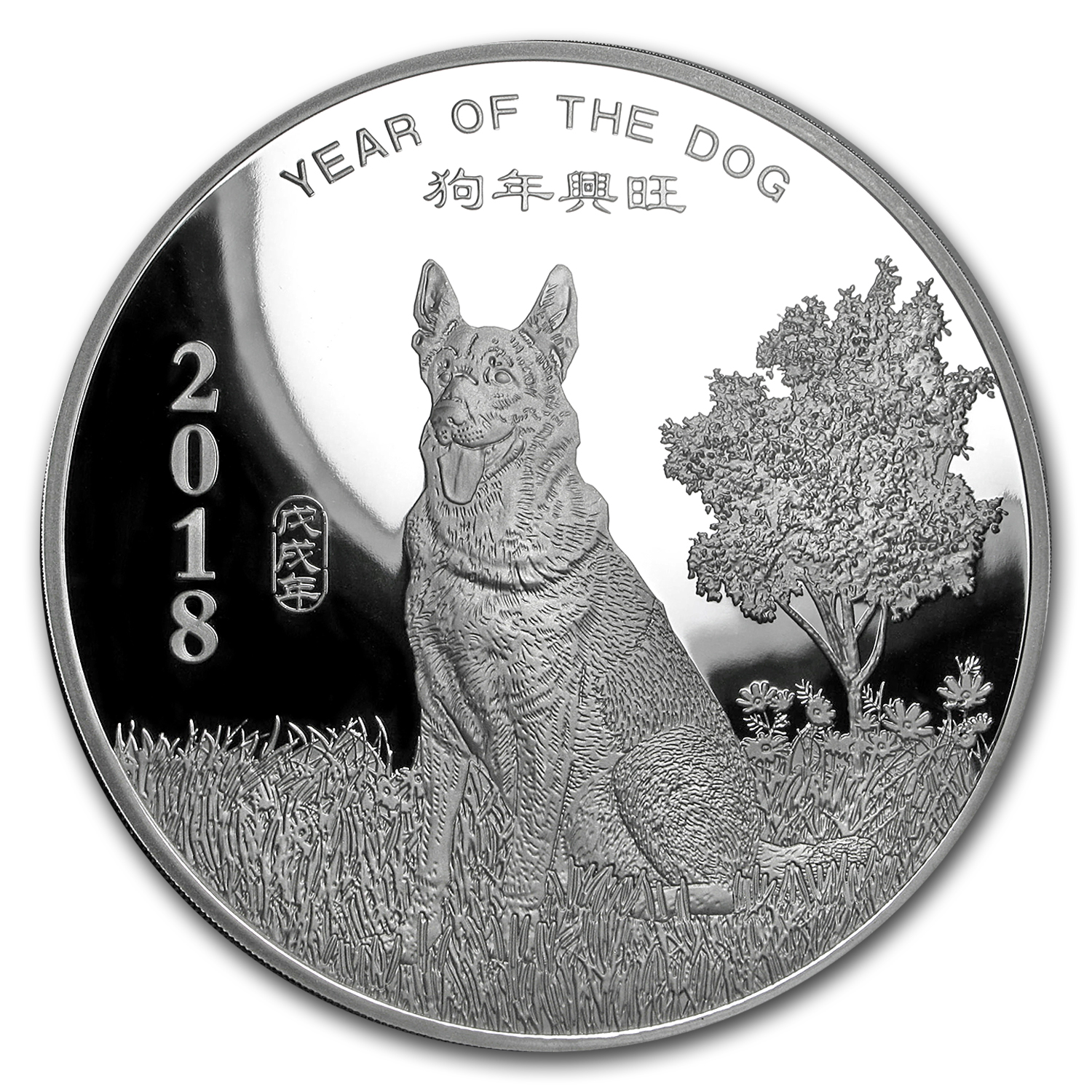10 oz Silver Round - APMEX (2018 Year of the Dog)