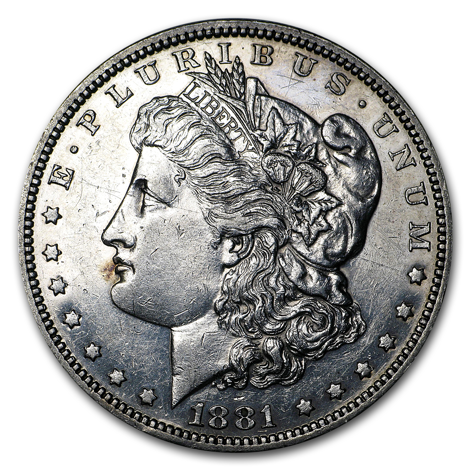 1881 Morgan Dollar Proof (Cleaned)