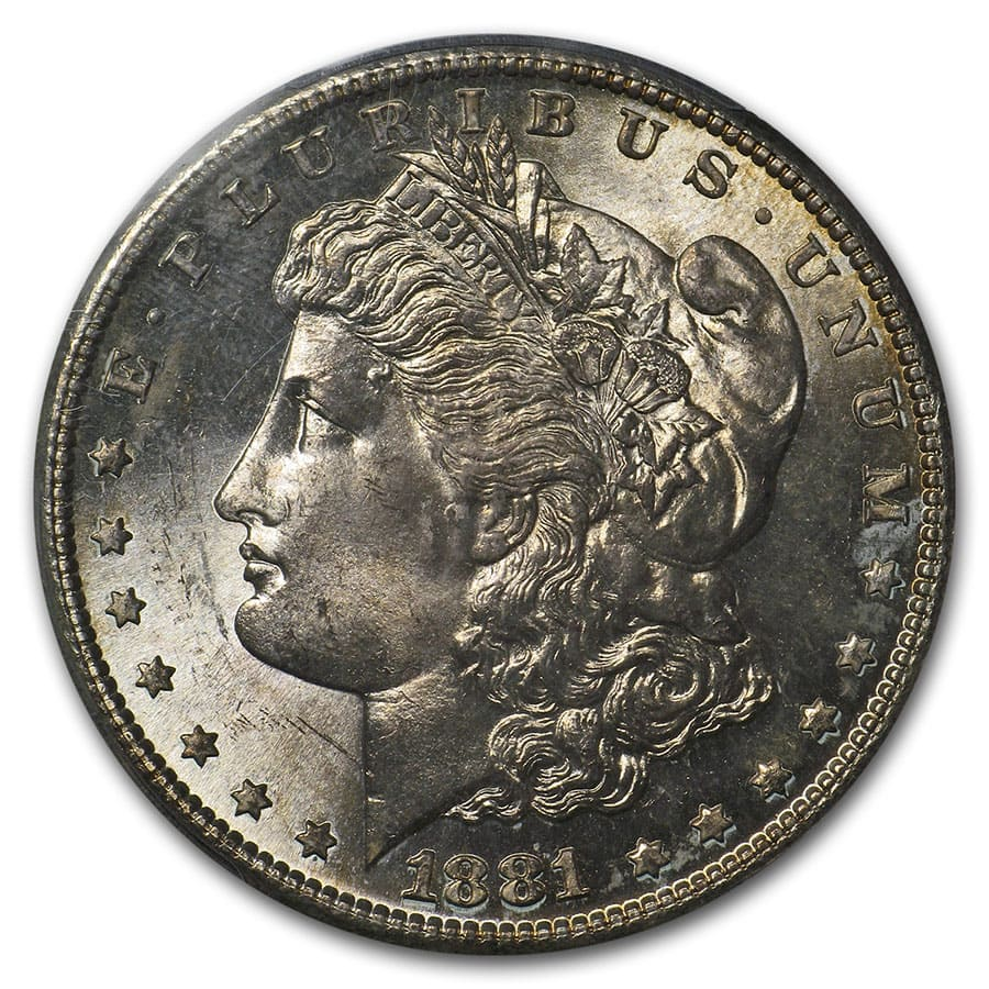 1878-1904 Morgan Dollars - MS-64 PCGS (Toned Obverse/Reverse)
