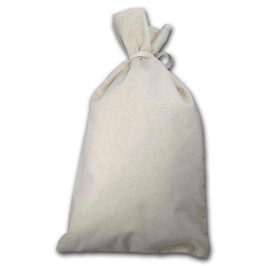 "Blank 10"" X 16"" Money Bag - Holds $500+ Coins (Heavy Duty)"