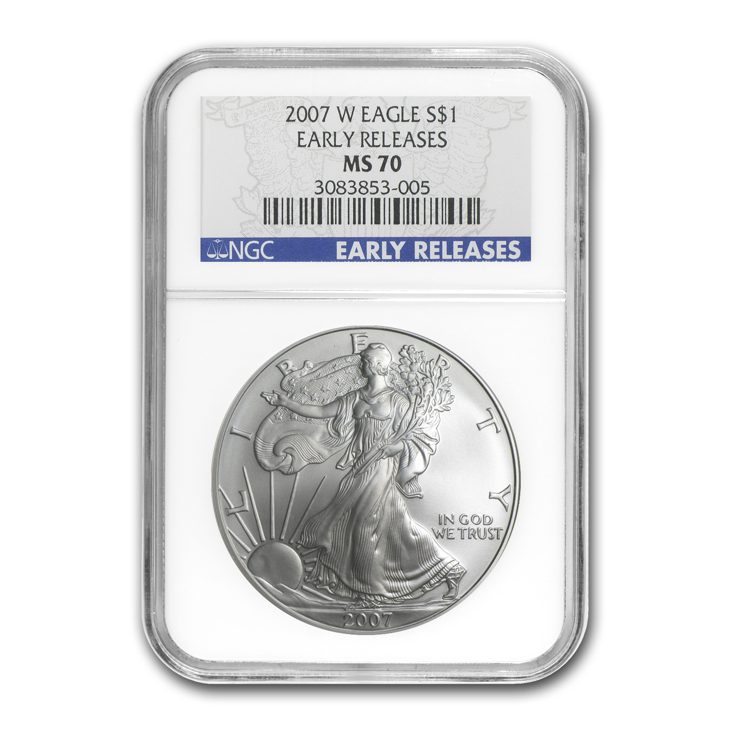 2007-W (Burnished) Silver American Eagle MS-70 NGC (ER)