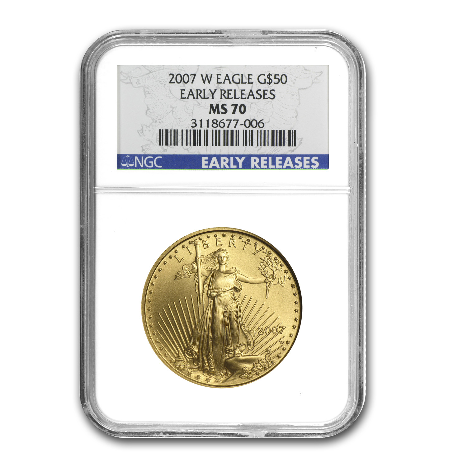 2007-W 4-Coin Burnished Gold American Eagle Set MS-70 NGC (ER)