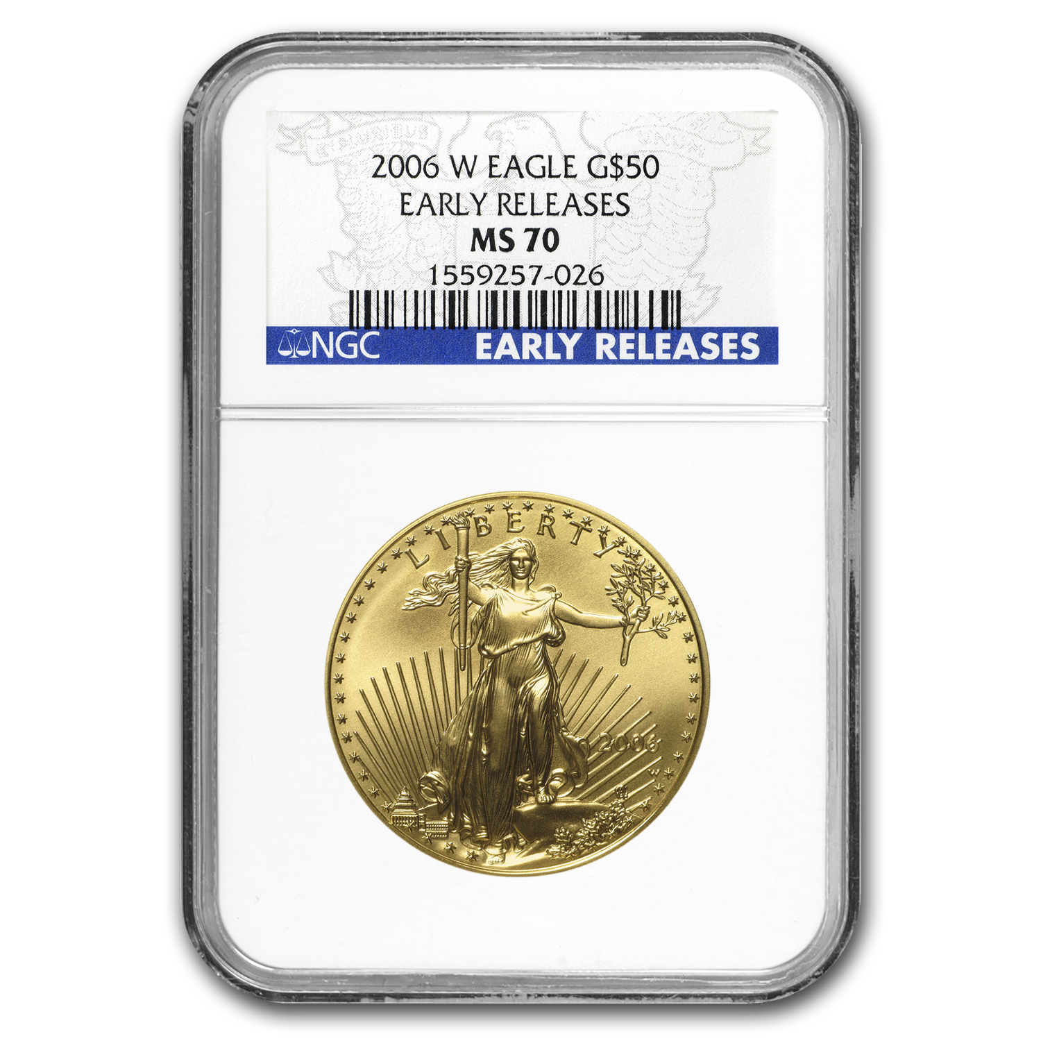 2006-W 1 oz Burnished Gold Eagle MS-70 NGC (ER)