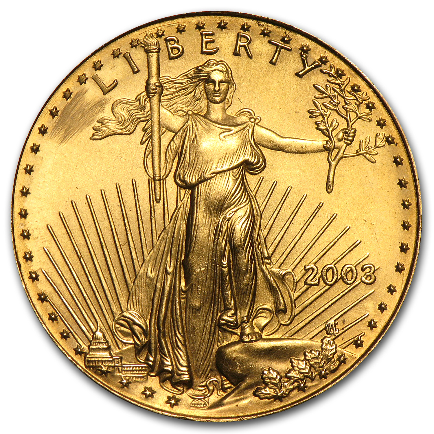 1/2 oz Gold American Eagle (Abrasions)